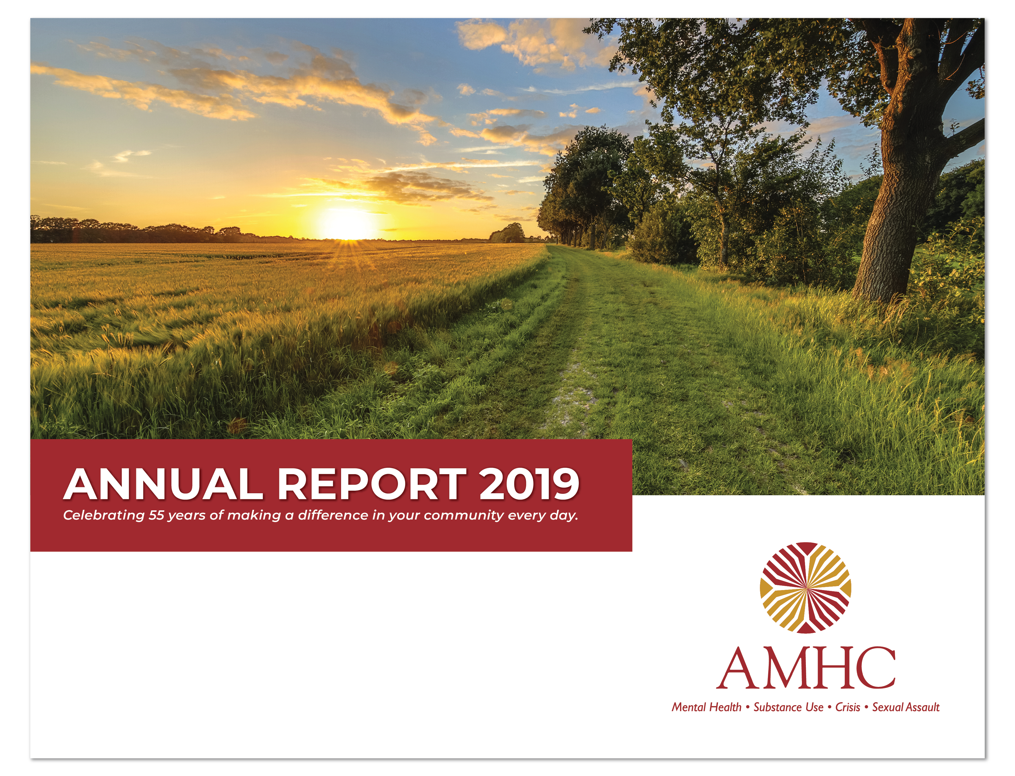 AMHC 2019 Report.png